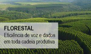 Banner_home_florestal2